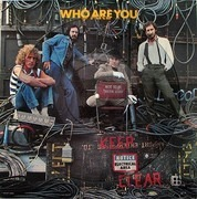 Picture LP - The Who - Who Are You