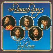 LP - The Beach Boys - 15 Big Ones - BACK TO BLACK / 180 GRAMS VINYL + DOWNLOAD