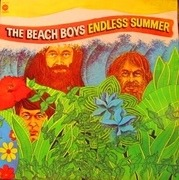 Double LP - The Beach Boys - Endless Summer - Gatefold