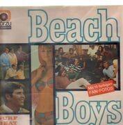 LP - The Beach Boys - Surf Beat Fun