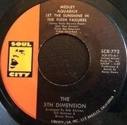 7'' - The Fifth Dimension - Medley: Aquarius / Let The Sunshine In (The Flesh Failures) / Don'tcha Hear Me Callin' To Ya