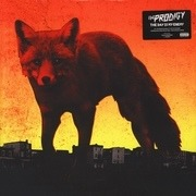 Double LP - Prodigy - Day Is My Enemy - HQ-Pressing