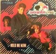 7'' - Thompson Twins - Hold Me Now