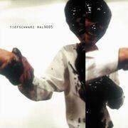 CD - Tiefschwarz - Ral9005