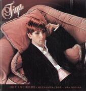 12'' - Tiga - Hot In Herre
