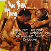 CD - Hot Chocolate / Milli Vanilli / Barry White / Stevie Woods a. o. - You Sexy Thing