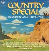 Double LP - Charlie Rich / Johnny Cash / Tammy Wynette / a. o. - Country Special - 32 Golden Country Songs - Gatefold