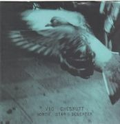 Double LP - Vic Chesnutt - North Star Deserter - 180GR.