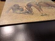 LP - Warhorse - Warhorse - pokora 5001 + swirl inner