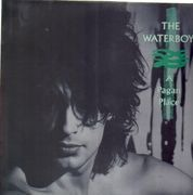 LP - The Waterboys - A Pagan Place