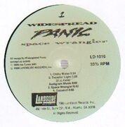 LP - Widespread Panic - Space Wrangler - original