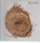 Double LP - Wilco - A Ghost Is Born