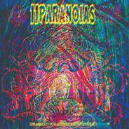 11paranoias - Reliquary For A Dreamed Of World (vinyl)
