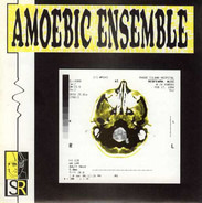 Amoebic Ensemble - Driving Music