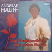 Andreas Hauff - Sag' Dankeschön Mit Roten Rosen (Neuaufnahme)