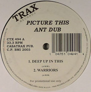 Ant Dub - Picture This
