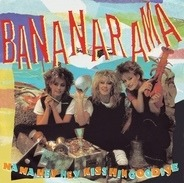 Bananarama - Na Na Hey Hey Kiss Him Goodbye