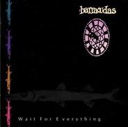Barracudas - Wait For Everything