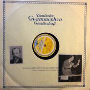 Smetana - Die Moldau (Mein Vaterland, II)