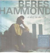 Beres Hammond - A Day in the Life...