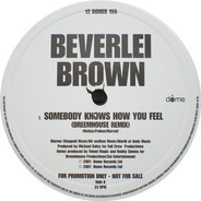 Beverlei Brown - Somebody Knows How You Feel (Remixes)