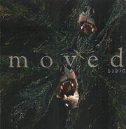 Biblo - Moved