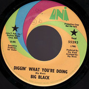 Big Black - Diggin' What You're Doin' / Long Hair