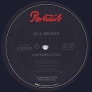 Bill Nelson - Contemplation