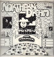 Bill Nelson - Northern Dream