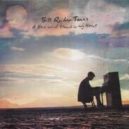 Bill Ryder-Jones - A Bad Wind Blows In My Heart