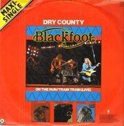 Blackfoot - Dry County