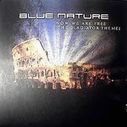 Blue Nature - Now We Are Free (The Gladiator Theme)