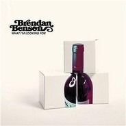 Brendan Benson - What I'm Looking For