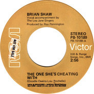 Brian Shaw - The One She's Cheating With / I'm There