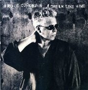 Bruce Cockburn - A Dream Like Mine