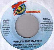 Bushman / Tony Rebel - What's The Matter