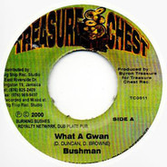 Bushman - What A Gwan