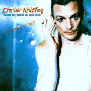 Chris Whitley Featuring Billy Martin And Chris Wood - Perfect Day