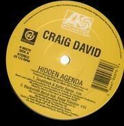 Craig David - Hidden Agenda / Personal