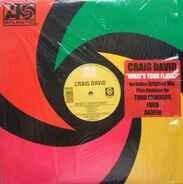 Craig David - What's Your Flava?