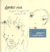 Damien Rice - Live at Fingerprints: Warts and All