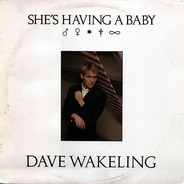 Dave Wakeling - She's Having A Baby