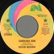 David Brown - Carolina Sun