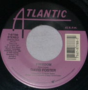 David Foster - Freedom / Grown-Up Christmas List