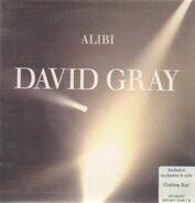 David Gray - Alibi
