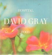 David Gray - Hospital Food