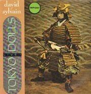 David Johansen & Sylvain Sylvain - Tokyo Dolls...Live!