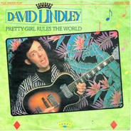 David Lindley - Pretty Girl Rules The World