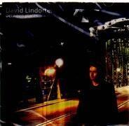 David Lindorfer - Between Places