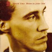 David Linx - Moon To Your Sun